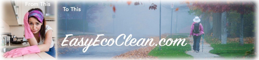 Instead of cleaning drudgery you can participate in the activities you desire with cleaning products from EasyEcoClean
