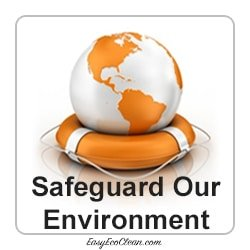 World globe in life ring - the Environment is safeguarded with cleaning products from EasyEcoClean
