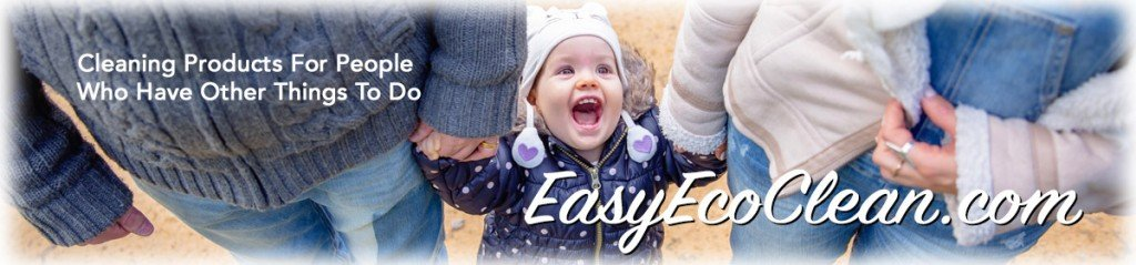 People who use green products from EasyEcoClean.com can enjoy their children instead of cleaning