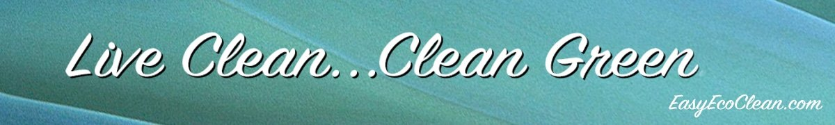 """Live Clean...Clean Green...in 2016"" on green background for check out page on EasyEcoClean.com"